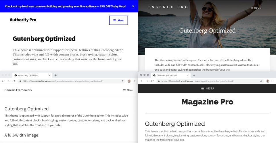 Wordpress Gutenberg Themes Gutenberg Wordpress Editor